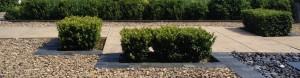 garden design monmouth