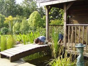 Garden Design Monmouth, Garden Design Abergavenny, Garden Design Chepstow